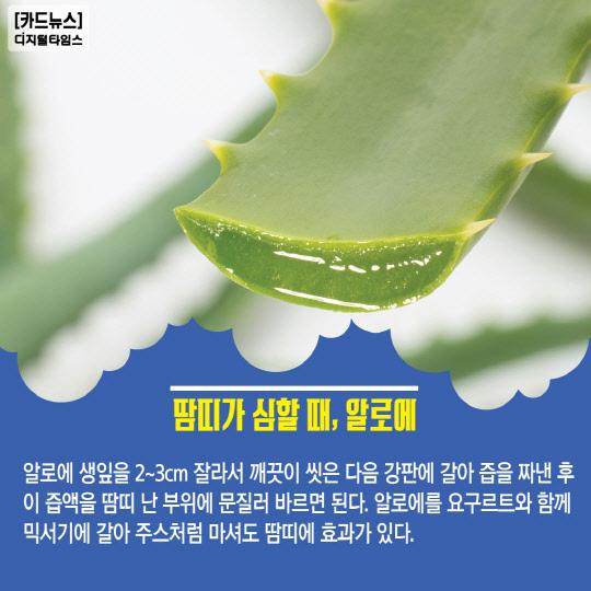 [카드뉴스] 여름철 면역력 키워주는 음식!